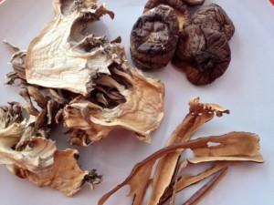 nutrient-dense bone broth Boosters, bone broth, bone broth Boosters, chaga, reishi, maitake, medicinal mushrooms, ingredients in bone broth, bone broth additives